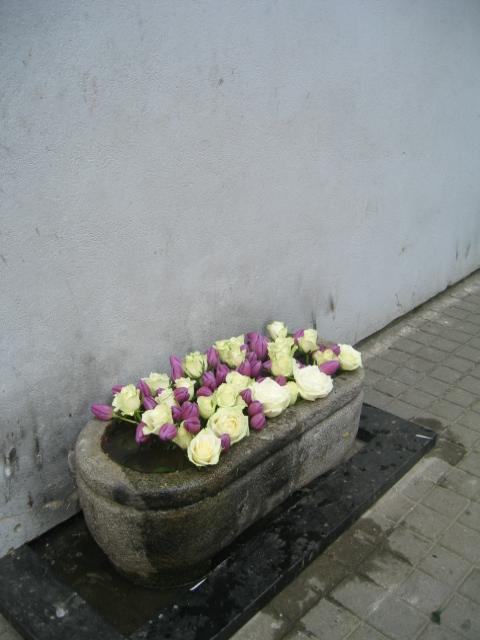 Vilnius maj 2009 dag 3 (95)
