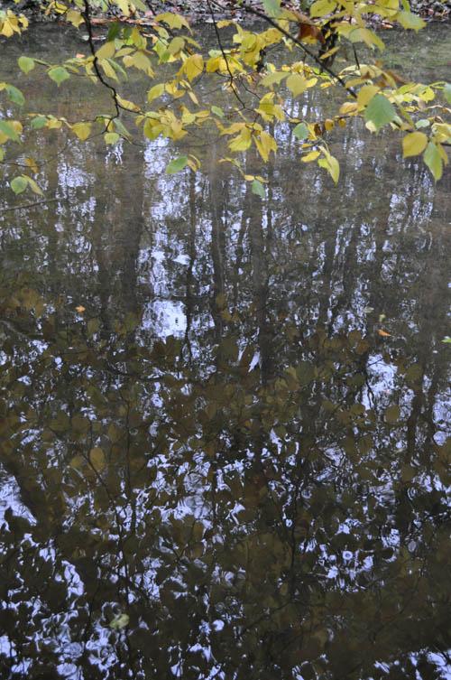 Efterårstur Moesgaard 2009 002 500