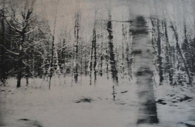 I forbifarten - Skoven 1 klar